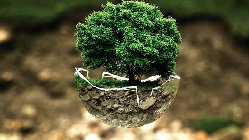эко-курорт, экология, природа